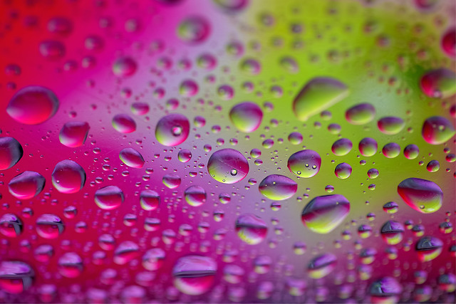 drop-dew-rainbow-water-drops-rain-wet picture material
