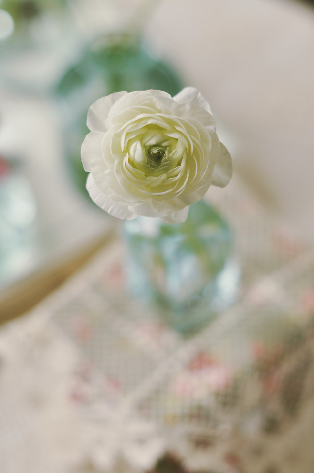 wedding-flower-romance-rose-love picture material