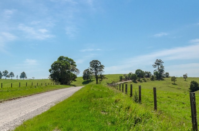 road-sky-field-tree-grass picture material