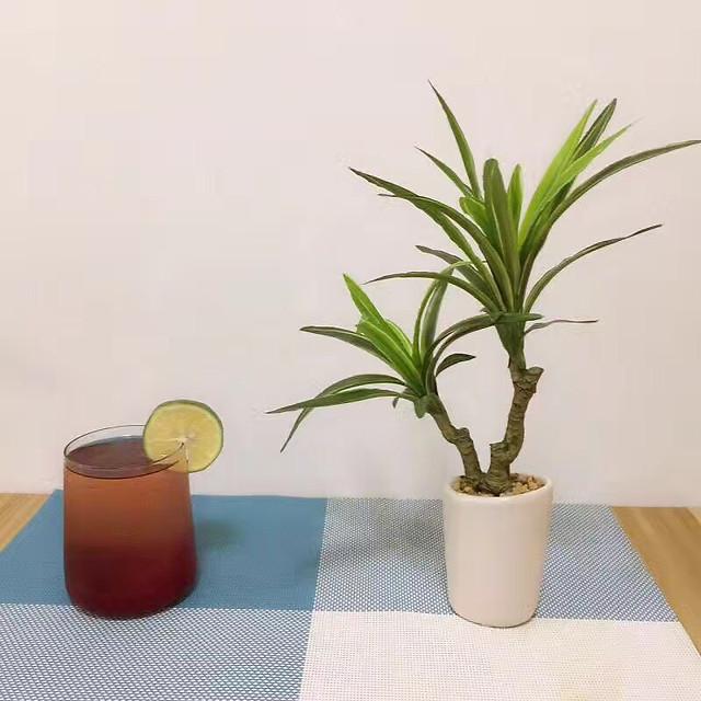 pot-leaf-flora-no-person-nature picture material