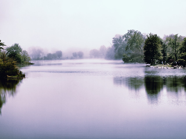 foggy-lagoon picture material