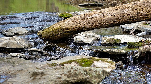 water-stream-river-no-person-nature picture material
