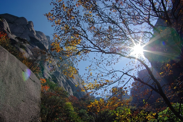 autumn-huangshan picture material