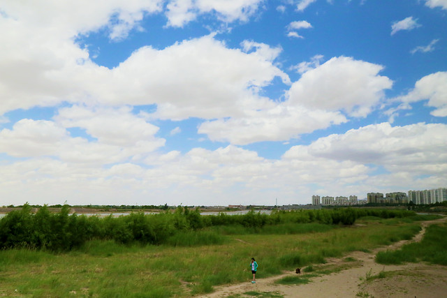 landscape-no-person-agriculture-sky-cropland picture material