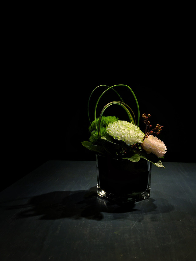 still-life-no-person-food-nature-flower picture material