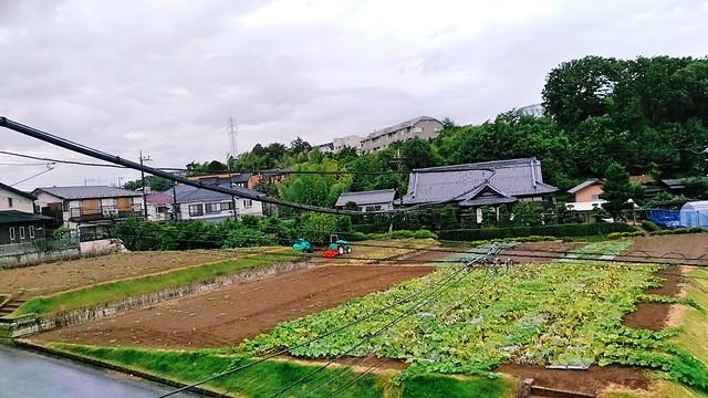 agriculture-house-no-person-farm-landscape picture material