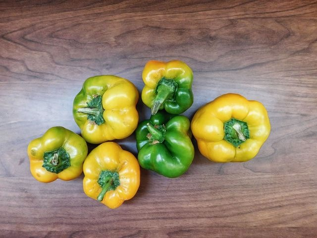 peppers 图片素材