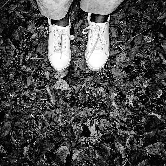 black-no-person-black-and-white-monochrome-retro picture material