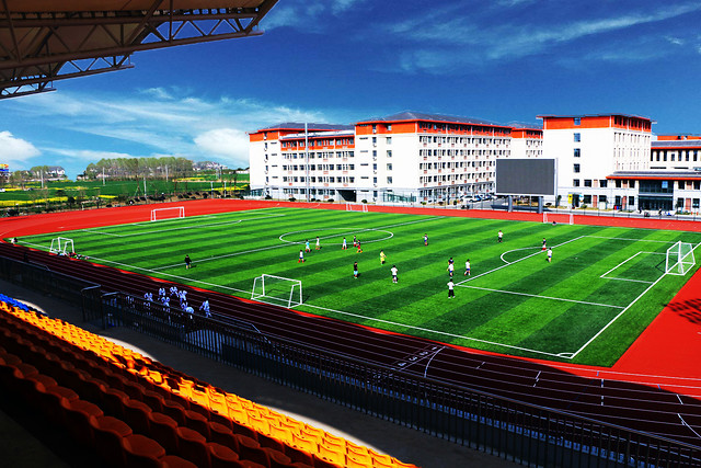 stadium-soccer-football-sport-venue-competition picture material