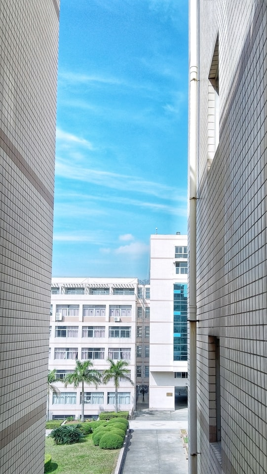 sunny-day-building-architecture-daytime-property picture material