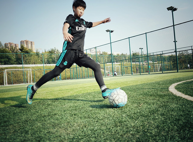 ball-grass-football-leisure-soccer picture material