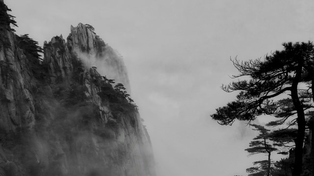 asia-natural-pine-black-and-white-landscape picture material