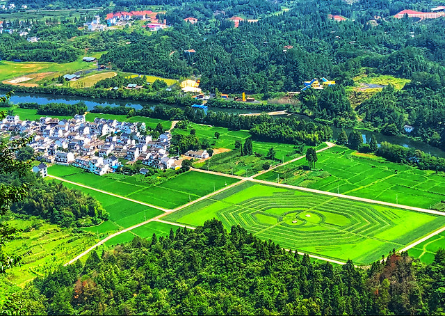 agriculture-cropland-no-person-travel-farm picture material