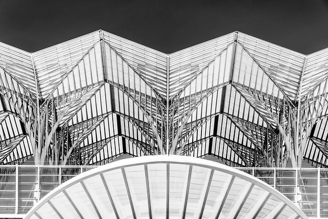 abstract-architectural-detail-of-gare-do-oriente-(lisbon-oriente-train-station) picture material
