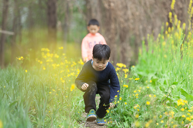 child-nature-grass-outdoors-summer picture material
