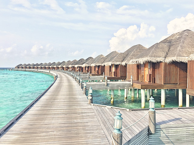 ayada-resort-maldives picture material