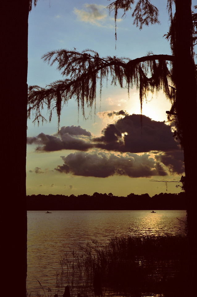 water-reflection-tree-sunset-sky picture material