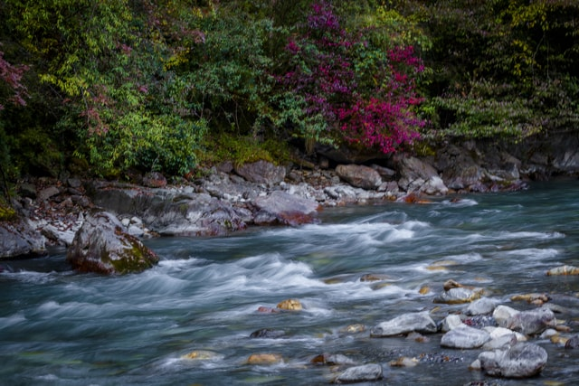autumn-rhyme-river-body-of-water-stream-nature-water-resources 图片素材