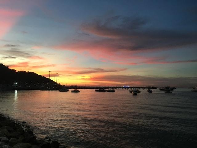 sunset-coconut-tree-sky-body-of-water-horizon 图片素材