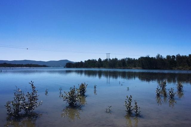 lake-body-of-water-reflection-sky-water 图片素材