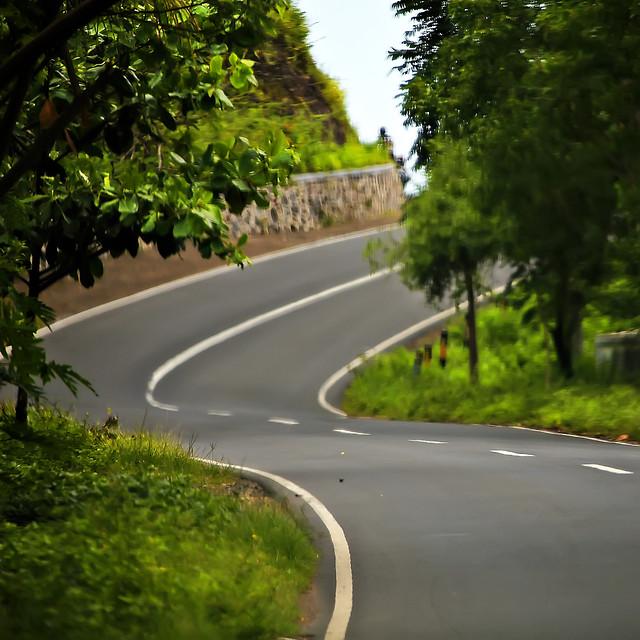 road-asphalt-lane-highway-tree picture material