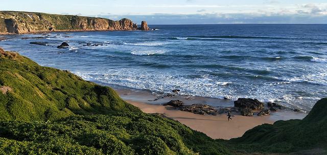 sea-ocean-beach-sky-water picture material
