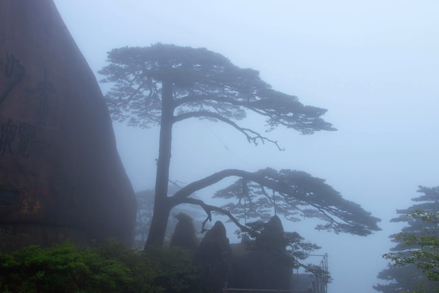 huangshan-yingkesong picture material