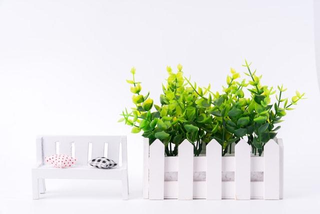 small-fresh-desktop-plants-small-fresh-desktop-plants picture material