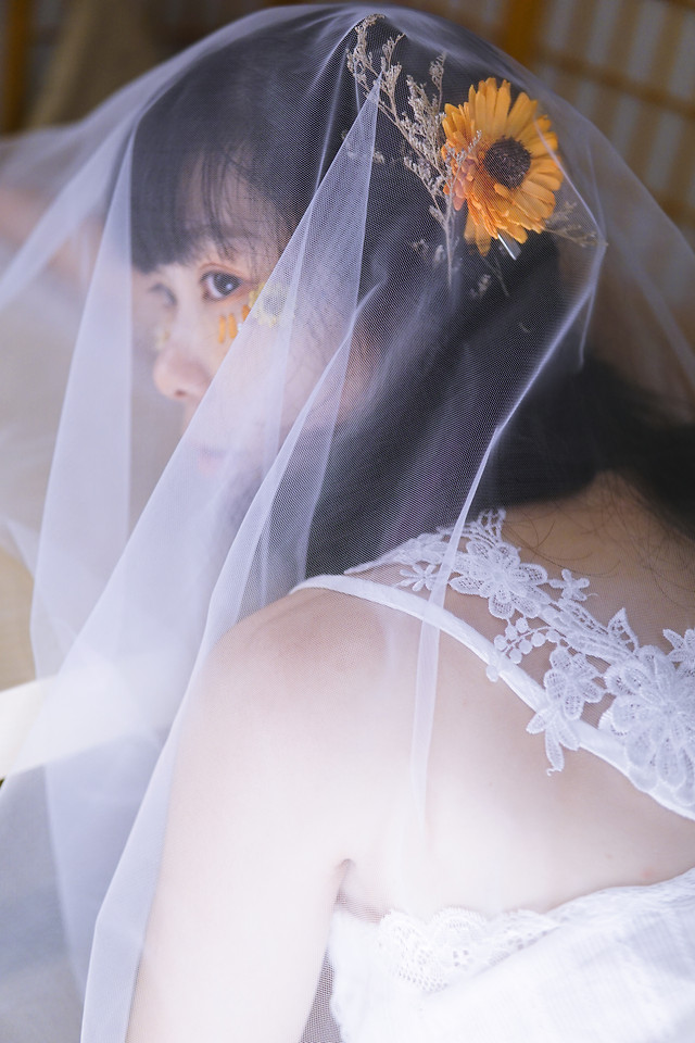 wedding-bride-veil-bridal-marriage picture material