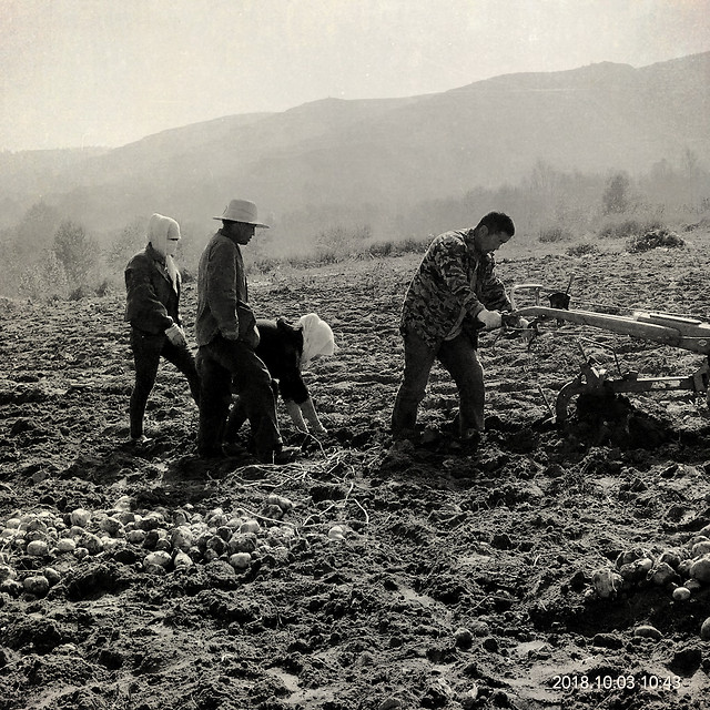 farm-work picture material