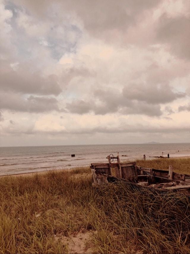 sky-sea-prairie-field-beach picture material