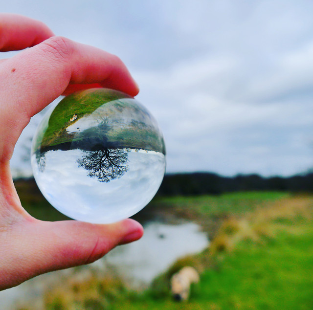 ball-shaped-environment-ecology-nature-planet picture material
