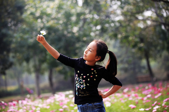 nature-park-flower-people-girl 图片素材
