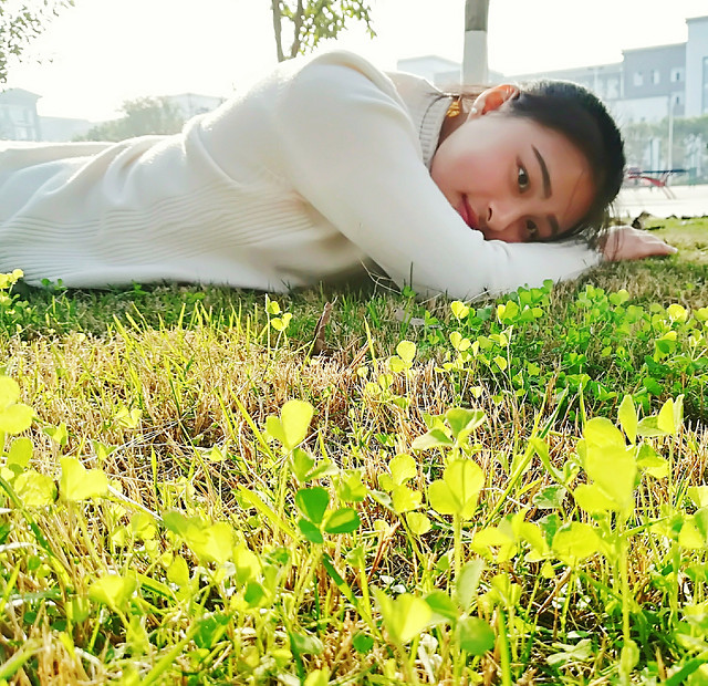 nature-grass-relaxation-summer-leisure picture material