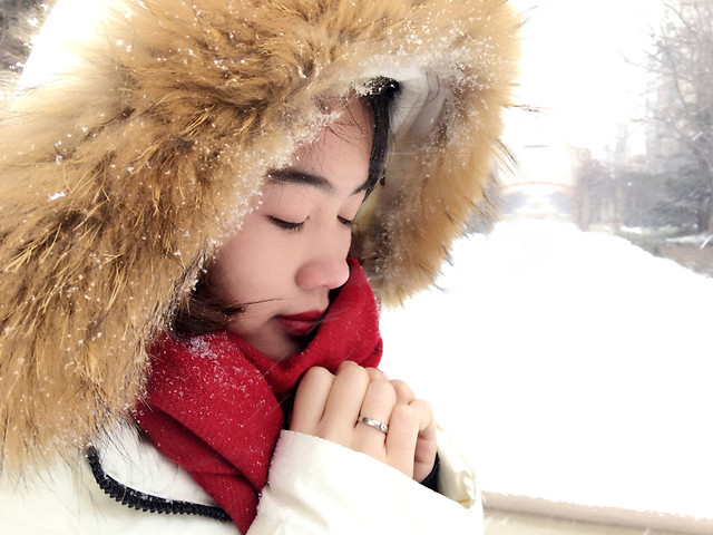 winter-fur-cold-christmas-woman picture material