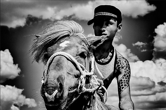 people-monochrome-one-black-white-horse picture material