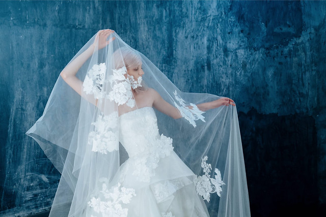 bride-wedding-veil-gown-fashion picture material