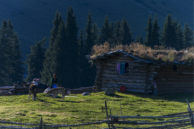 landscape-wood-hut-no-person-mountain picture material