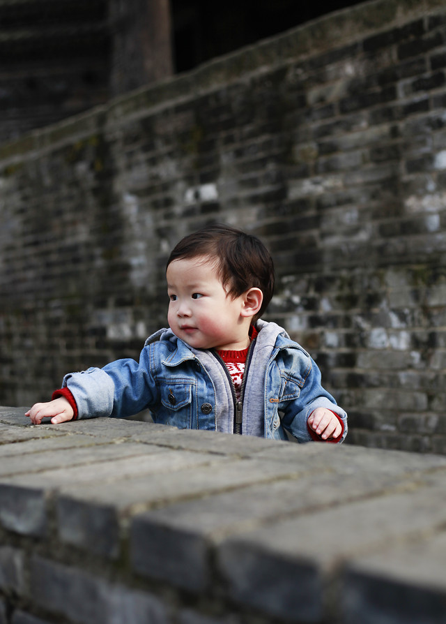 child-one-people-boy-portrait picture material