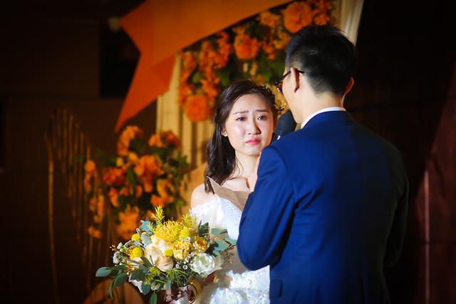 wedding-people-groom-woman-bride picture material