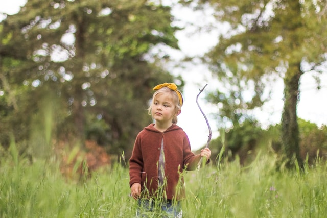 play-forest-learning-spring-grass picture material