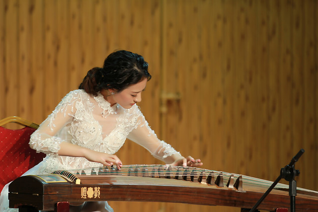 wood-music-woman-musician-people picture material