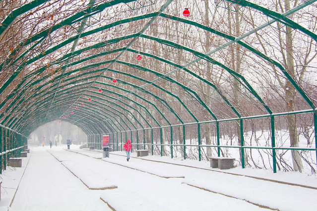 no-person-indoors-ceiling-tunnel-architecture 图片素材