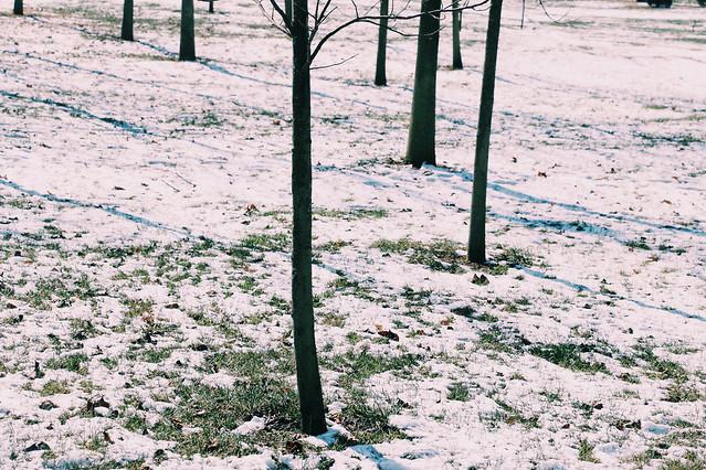 no-person-nature-landscape-outdoors-snow 图片素材
