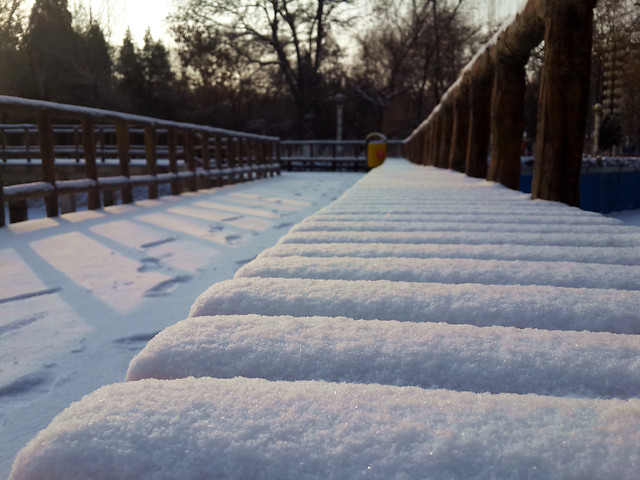 snow-winter-no-person-cold-wood 图片素材