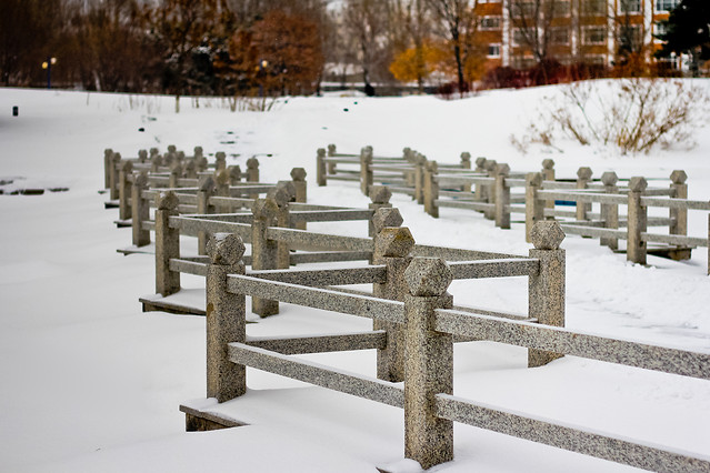 winter-snow-cold-frost-wood 图片素材