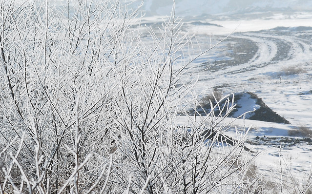 winter-snow-frost-cold-frozen 图片素材