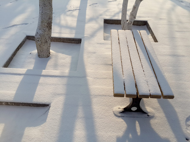 no-person-outdoors-snow-wood-travel picture material