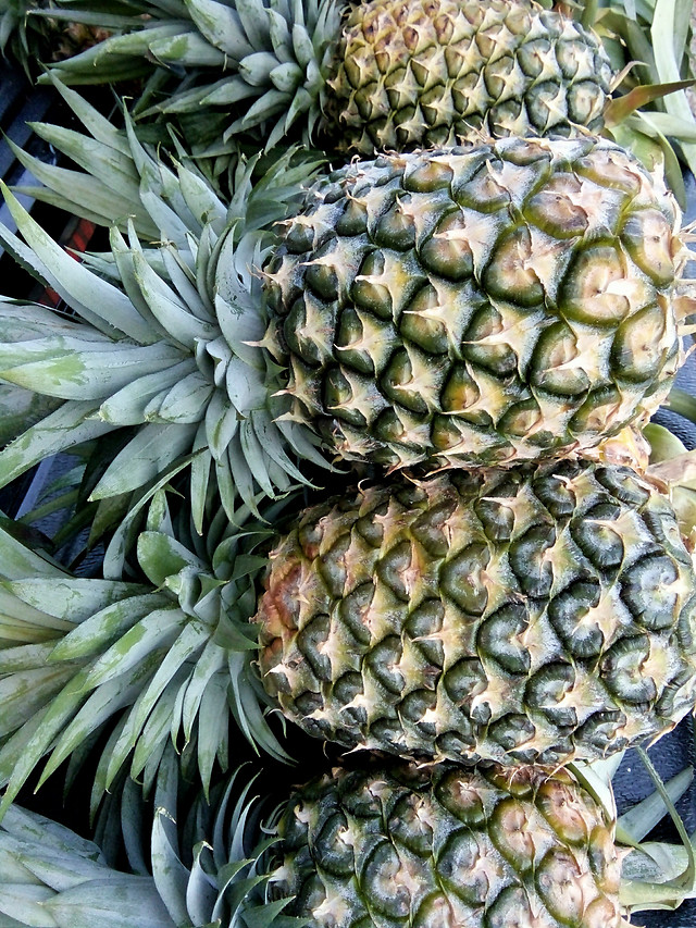 pineapple picture material