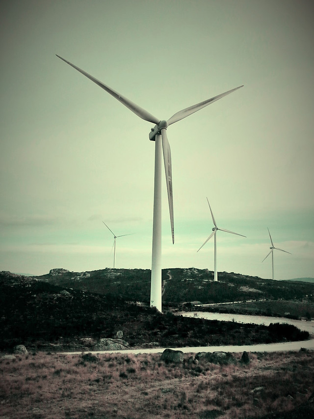 land-of-wind picture material